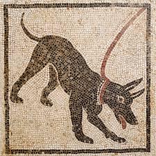 """""""Io, il Cane"""", incontri alla scoperta del Cane"""